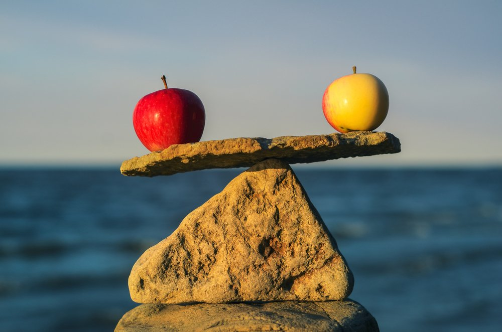 A red and a green apple balanced on rocks with ocean in the backgroud